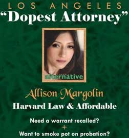 advertisements Unethical lawyer