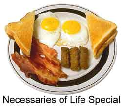 Necessaries of life special