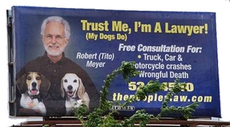 Lawyer Names For Dogs