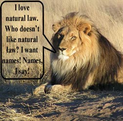 lion and natural justice