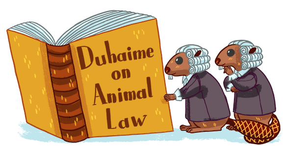 Animal Law: 2007 - The Treaty of Lisbon