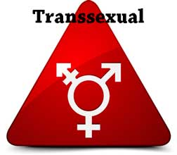 transsexual legal definition